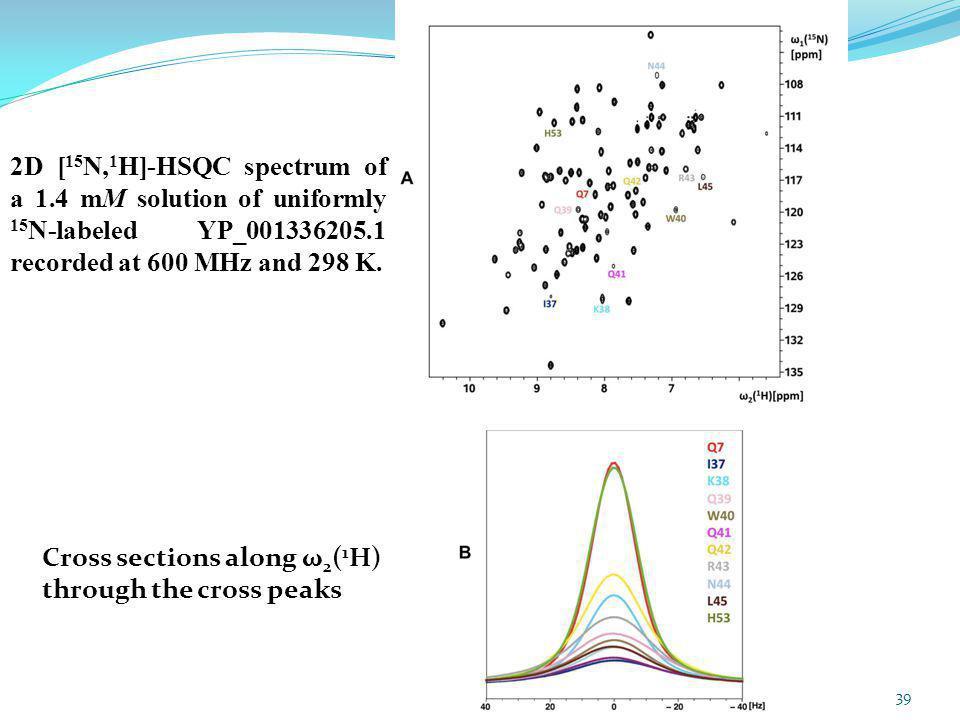 2D [15N,1H]-HSQC spectrum of a 1